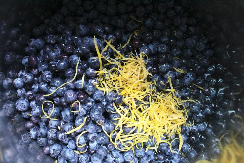 BlueberryJam-2