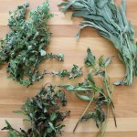 How To Dry and Pair Summer Herbs