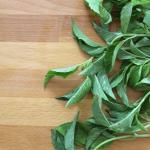 How to Make Pesto – Part 1 – Basil Pesto