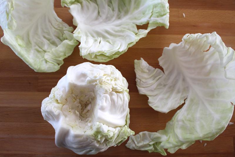 CabbageRolls-4