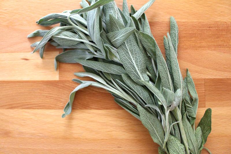 Herbs-2