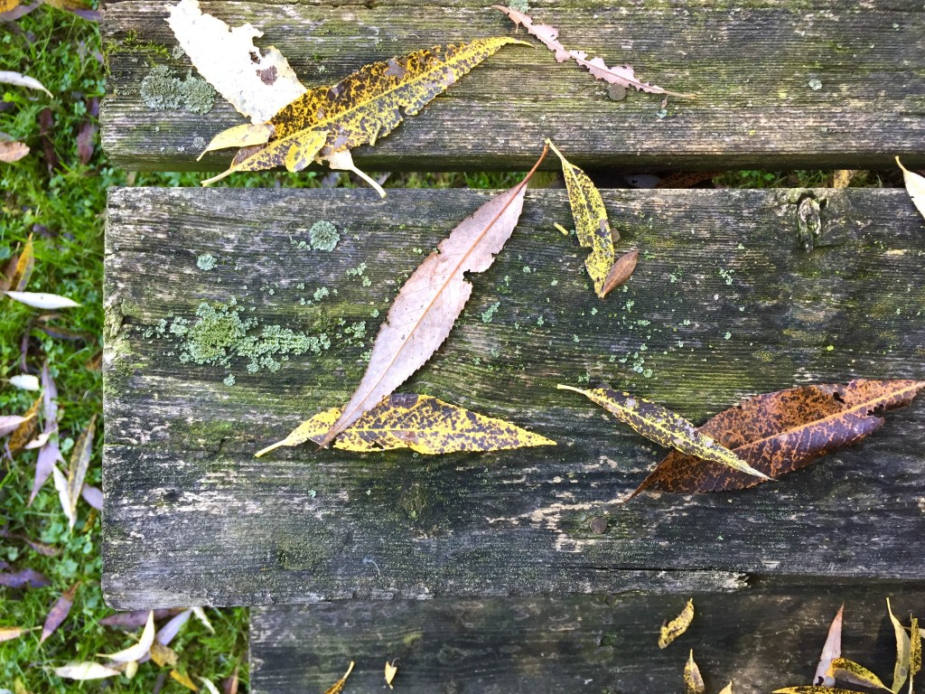 leavestable